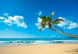 Classic Sri Lanka (With Yala & Beach)