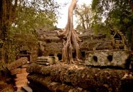 Angkor Temples & Vietnam Adventure