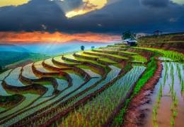 Vietnam Highlights - Small Group Tour